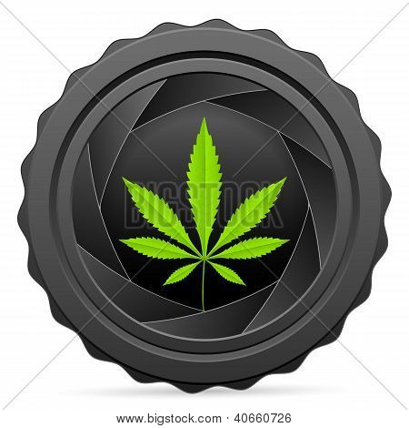 Camera Shutter With Marijuana Leaf