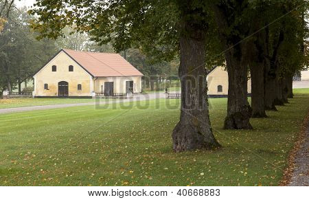 Elderly farmhouse beyond the trees and lawn.