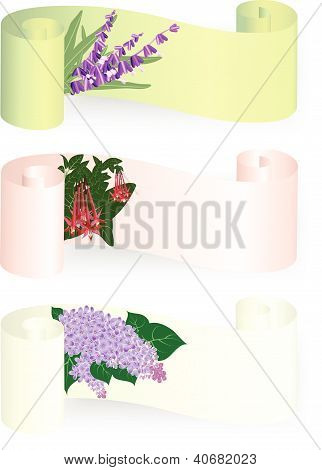 Banners with lavender, lilac and fuchsia