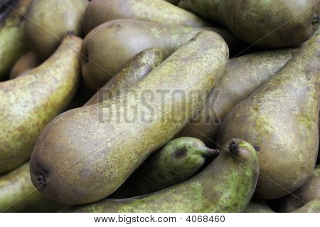 Organic Conference Pears. Slim, With A Russet Skin.