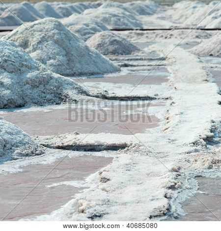 Salt Piles In Salt Farm, India