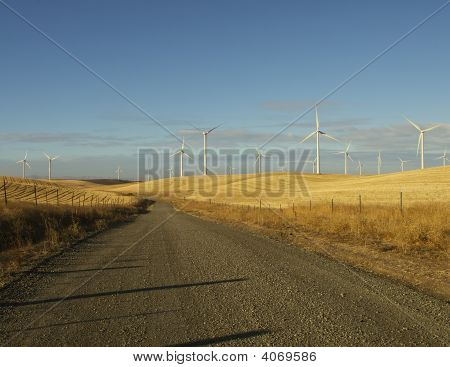 Windfarm And Country Road