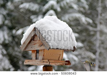 A bird with sunflower seed flying from a wooden bird feeder with snow covering its roof during the Winter in Europe