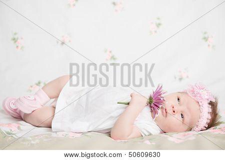 Beautiful newborn girl holding a flower