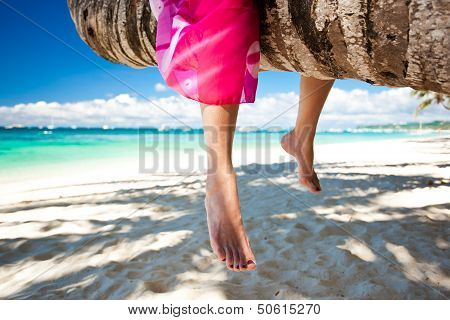 Woman's Legs Closeup, Sitting On Coconut Palm