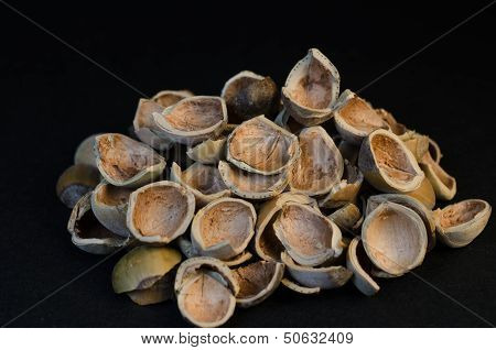 Handful of whole hazel nuts shels isolated