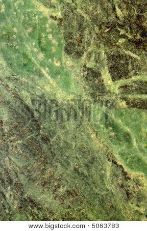 Serpentine Stone Texture