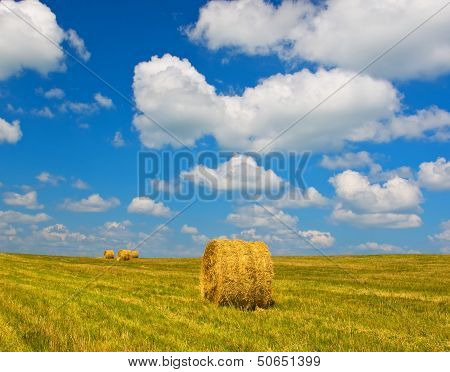 Bundles Of Straw On The Field After Harvest