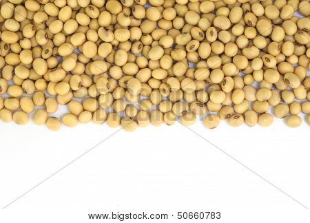 Soy Beans .