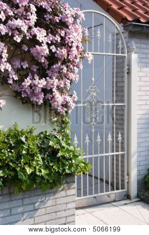 White Wrought Iron Gate With Clematis Flowers