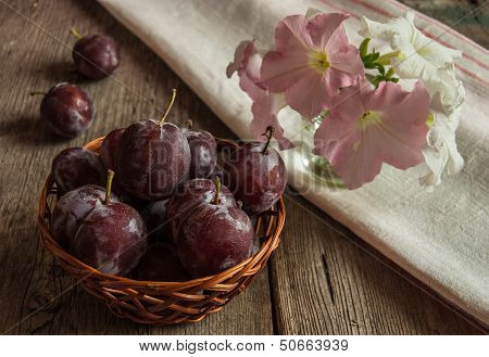 The Fresh Misted-over Plums