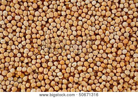 The Texture Of Coarse Dry Peas Horizontal