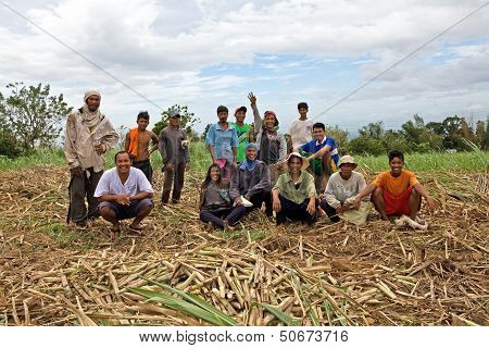 Sugar Cane Field Workers