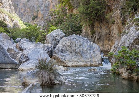 Preveli, river in palm grove
