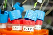 stock photo of ethanol  - Tubes with ethanol in a chemical lab
