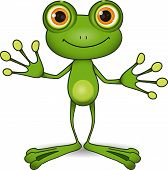 pic of amphibious  - standing cute green frog with big eyes - JPG
