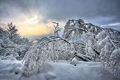 stock photo of macedonia  - Winter mountains landscape from Macedonia  - JPG