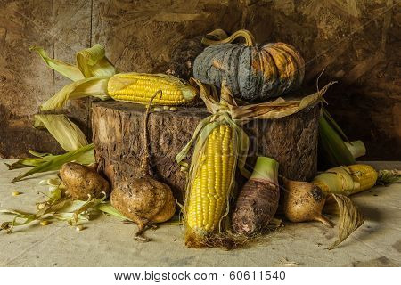 Still Life With Corn, Pumpkin, Taro And Yam
