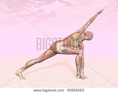 Revolved side angle yoga pose for woman