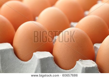 Brown egg in paper package close up