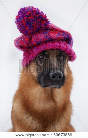 Shepherd Sitting In A Knitted Hat