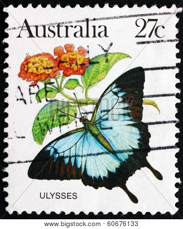 Postage Stamp Australia 1983 Ulysses Butterfly