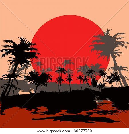 Beach in the tropics at sunset, vektor illustration.