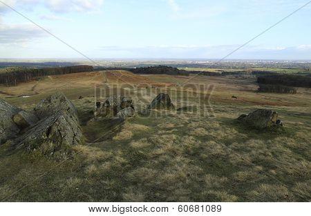 Bradgate View