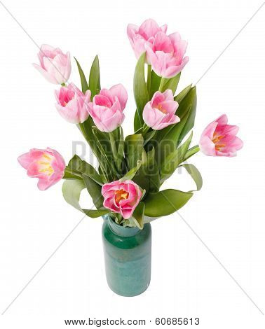 Pink Tulips In Gree Vase Isolated On White Background