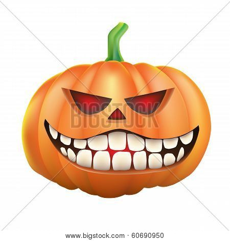 Pumpkin sneer on white background
