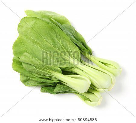 Green Pak Choi
