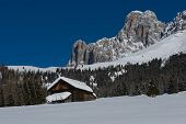 stock photo of south tyrol  - Chalet and trees under the snow in the idyllic landscape of the dolomiti in Trentino South Tyrol - JPG