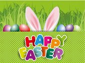 picture of white rabbit  - Happy easter egg design for the rabbit - JPG