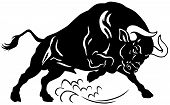 image of herbivore animal  - angry bull - JPG