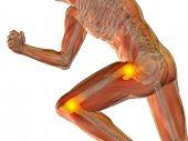 image of knee-cap  - Conceptual 3D human man anatomy or health design - JPG