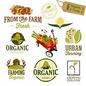stock photo of barn house  - Set of Fresh Organic Labels and Elements - JPG