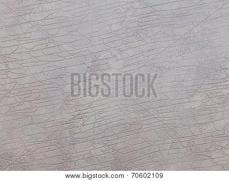 Texture Elephant