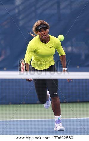 Grand Slam champion Serena Williams practices for US Open 2014
