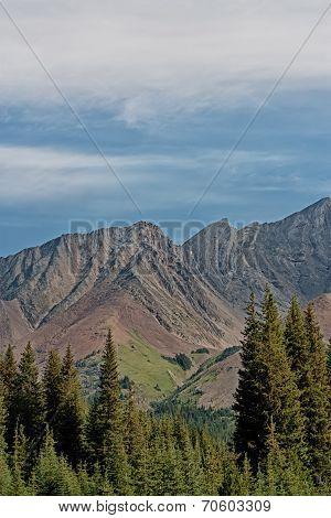 Portrait Highwood Pass Landscape