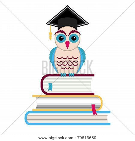 Graduation Cap And Owl