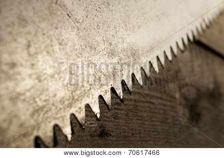 Rusty saw blade