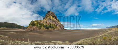 Beautiful Piha beach near Auckland with a mighty Lion Rock, New Zealand. Panoramic photo