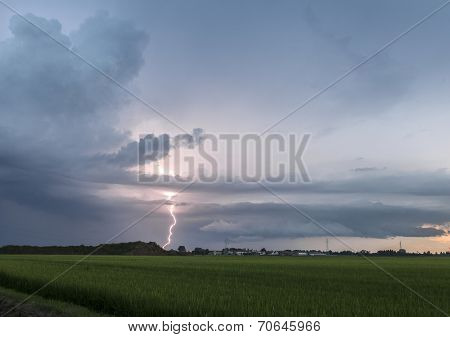 Lightning and thunderstorm over the fields