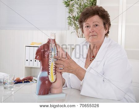 Senior Female Doctor Explaining The Human Body With Torso.