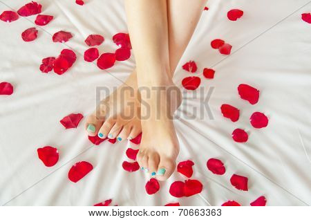 Woman Feet On White Sheet With Rose Petals