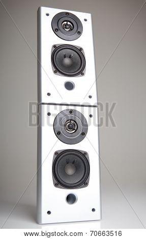 Silver sound speaker