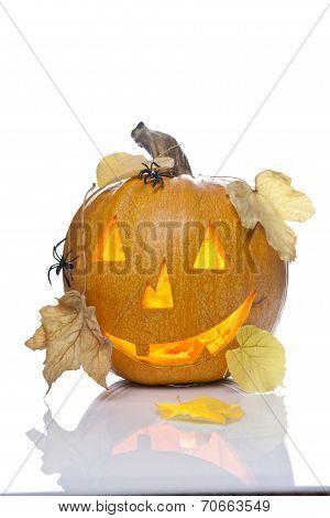 A scary old jack-o-lantern on white