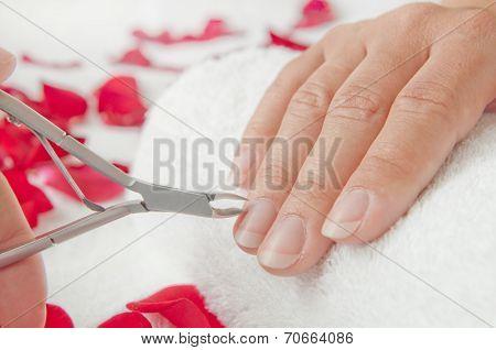 Manicure In A Beauty Salon