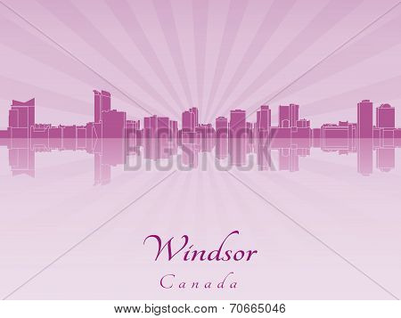 Windsor Skyline In Purple Radiant Orchid