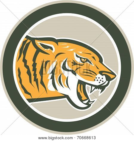 Angry Tiger Head Growling Side Circle Retro